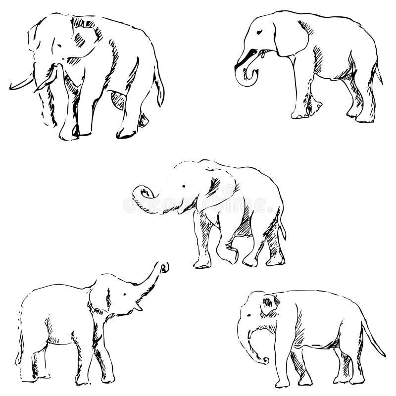 olifanten een schets met de hand De tekening van het potlood stock afbeelding