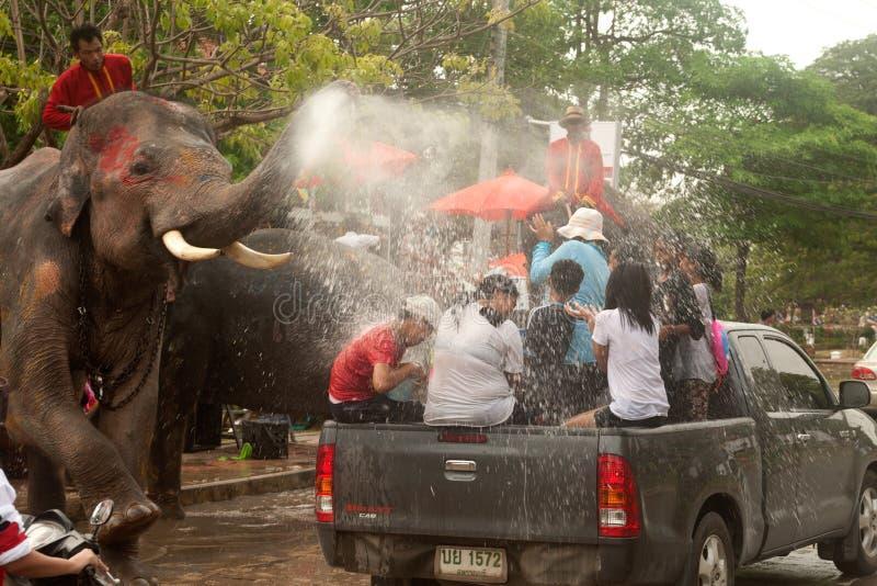Olifants bespattend water in Songkran-dag in Thailand. royalty-vrije stock afbeeldingen