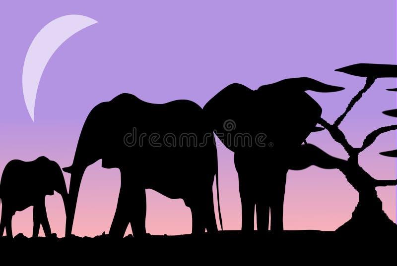 Olifantsfamilie in de Maneschijn vector illustratie