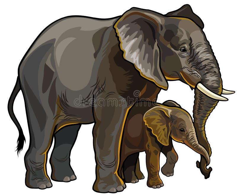 Olifantsmoeder met baby stock illustratie