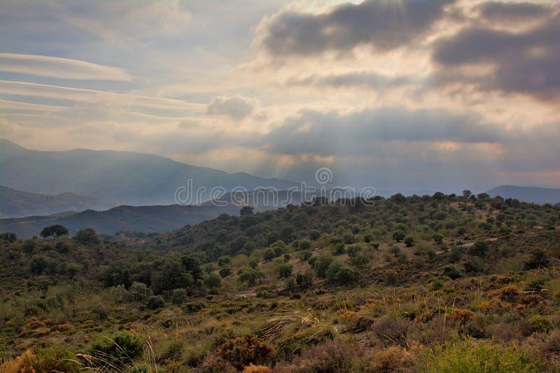 Olijfboomboomgaarden in Sierra Nevada -bergen met dark die wolken bedreigen stock foto's