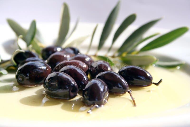 Olijven en Olijfolie stock afbeeldingen