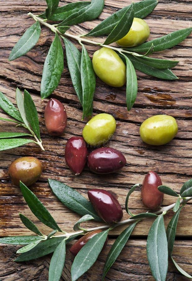 Olijven en olijftakjes stock afbeeldingen