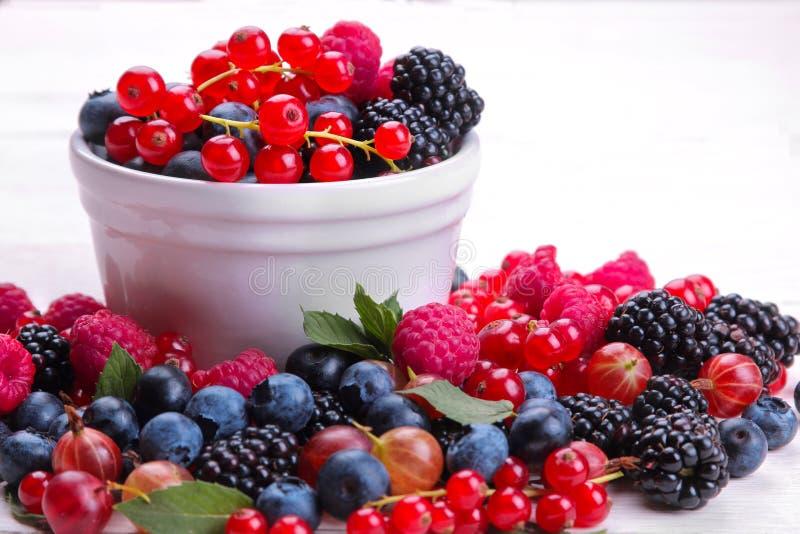 Olik bärnärbild inklusive blåbär, hallon, björnbärvinbär och krusbär i en vit bunke på en whi fotografering för bildbyråer