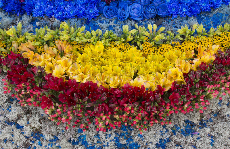 Olik färgblommacompositon, bästa sikt fotografering för bildbyråer