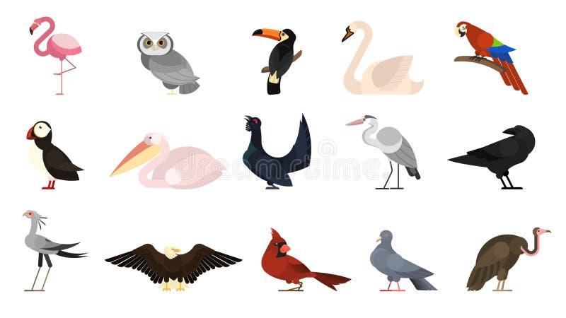 Olik fågeluppsättning Samling av lösa fåglar vektor illustrationer