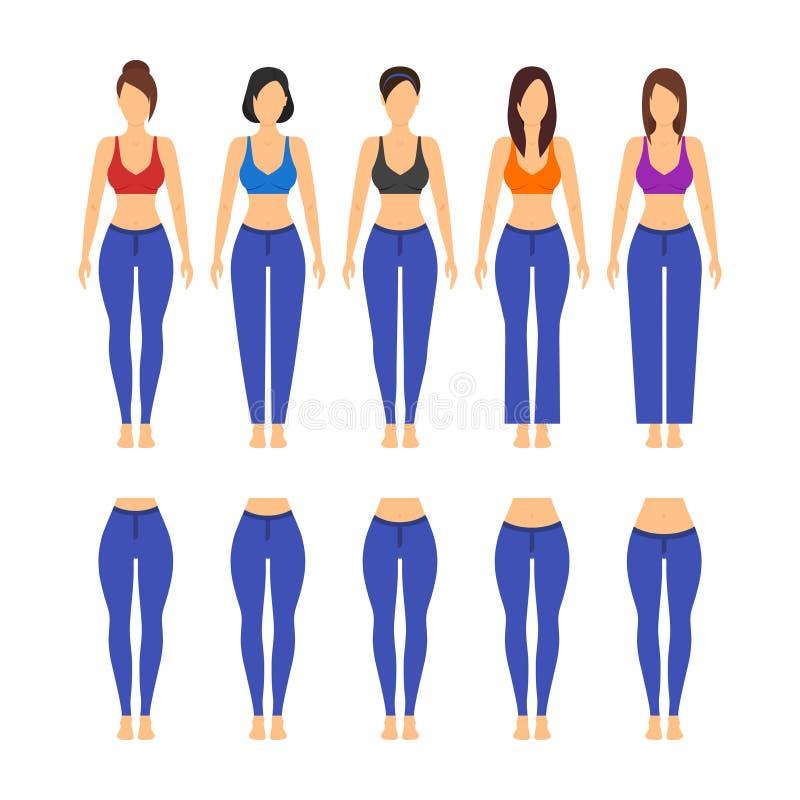 Olik modell och passform för jeans för kvinnor vektor royaltyfri illustrationer