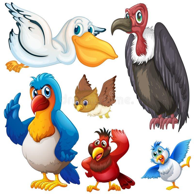Olik sort av fåglar royaltyfri illustrationer