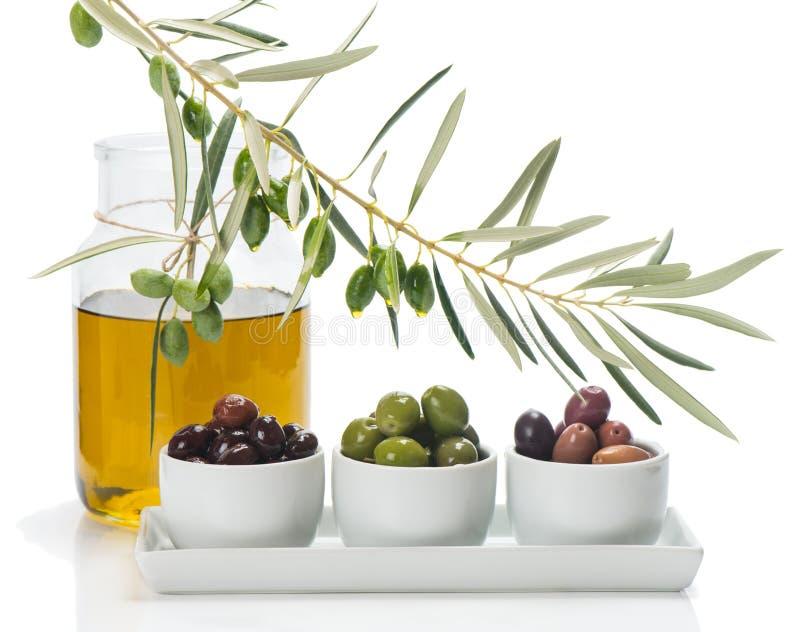 Olik sort av oliv och filialen av olivträdet med droppar, ol arkivfoton