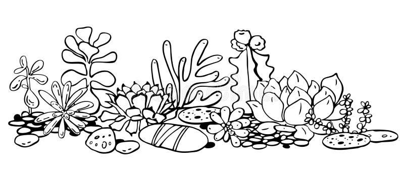 Olik suckulentsammansättning Vektorhanden som dras för att skissera svartvitt, skissar illustrationen stock illustrationer