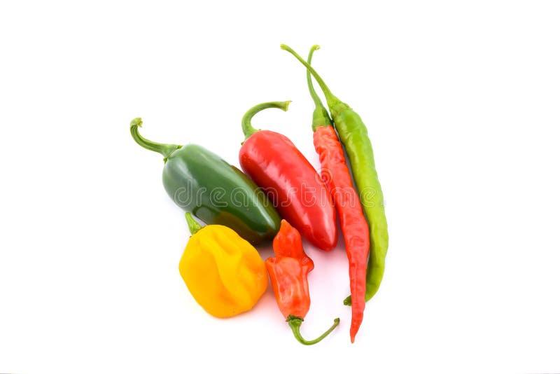 Olik variation av chili royaltyfria bilder