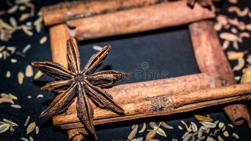 Olika aromatiska kryddor och örter på svart bakgrund arkivbilder
