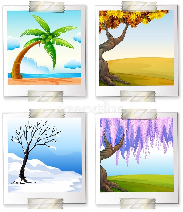 Olika bilder av de fyra seaonsna vektor illustrationer