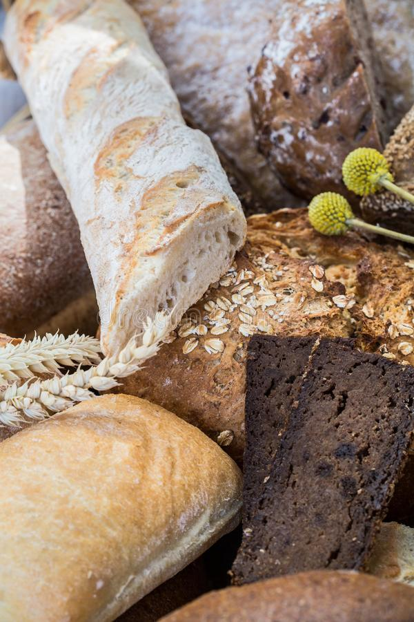 Olika bröd i flera format royaltyfri bild