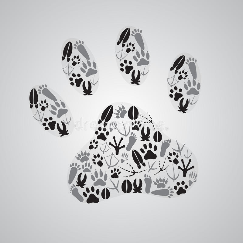 Olika djura fotspår vektor illustrationer