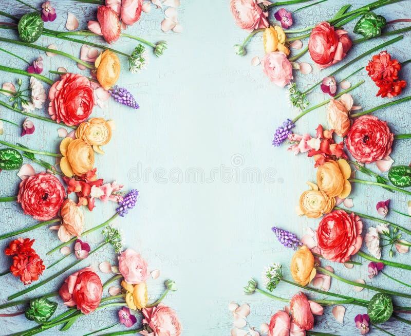Olika färgrika trädgårds- blommor i sommar färgar på sjaskig chic bakgrund för blå turkos, den blom- ramen, bästa sikt arkivbild