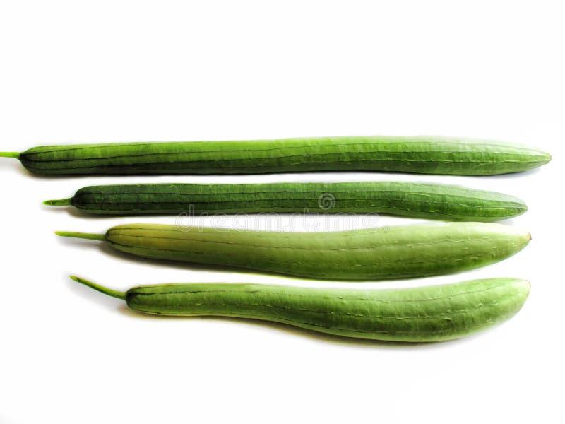 Olika format för zucchini som förläggas längs dess längd royaltyfria bilder