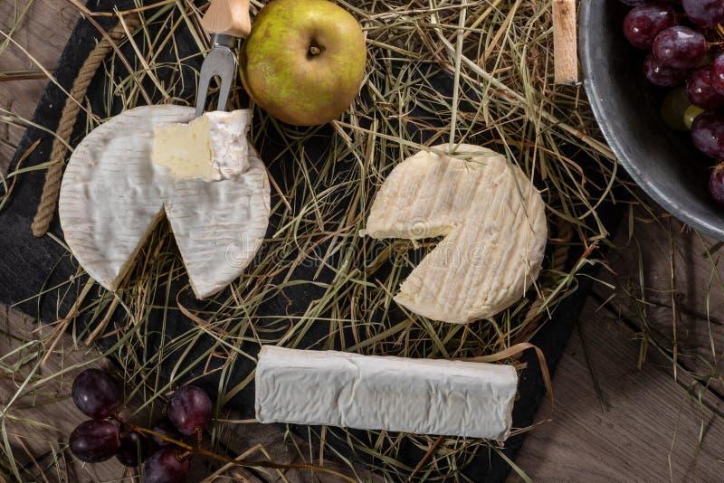 Olika franska ostar på sugrör royaltyfri bild