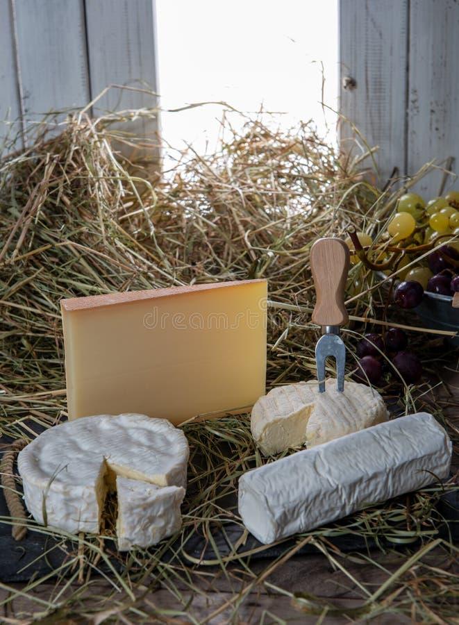 Olika franska ostar på sugrör arkivfoton