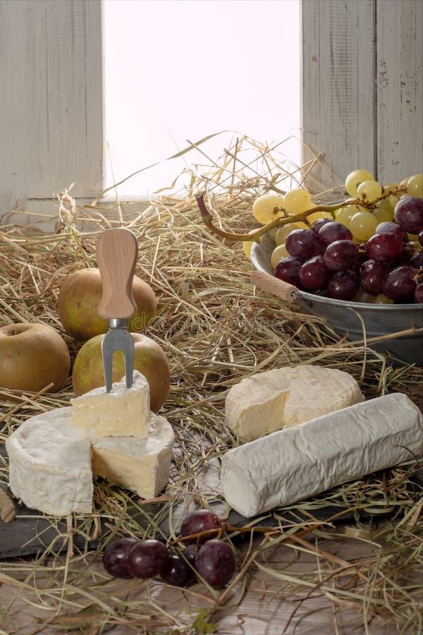 Olika franska ostar på sugrör france royaltyfria foton