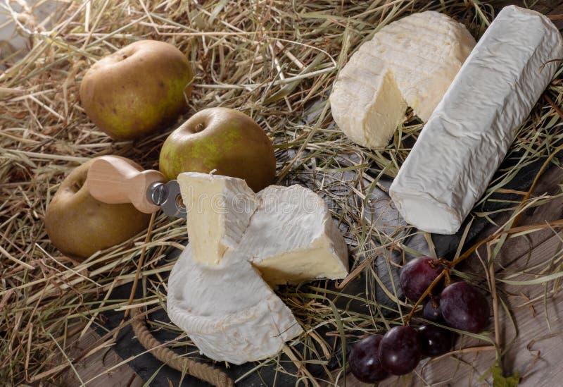 Olika franska ostar på sugrör france arkivfoton