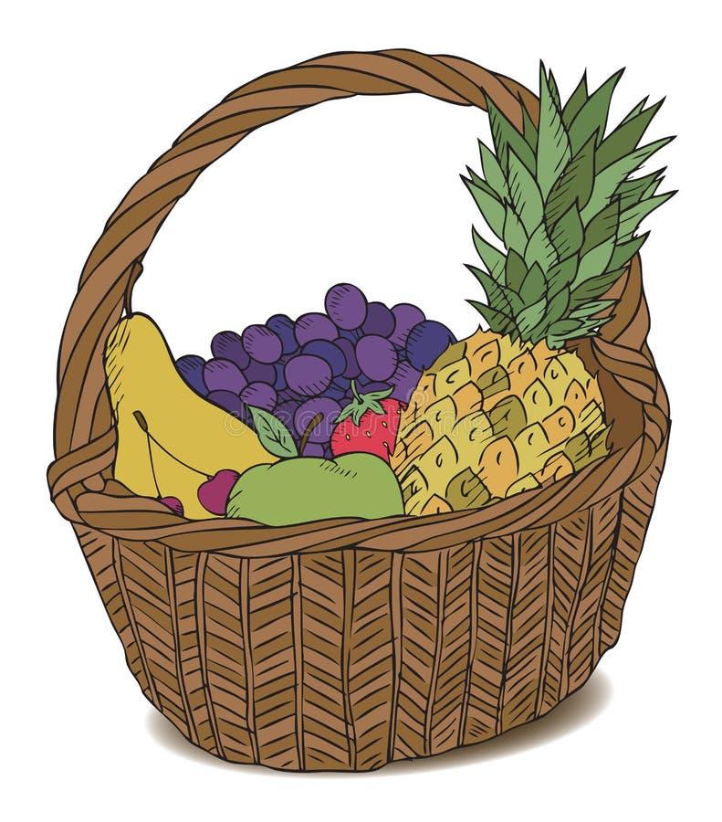 olika frukter för korgfärg arkivbild