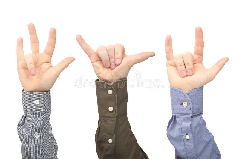 Olika gester av manliga h?nder mellan de p? en vit bakgrund royaltyfri foto