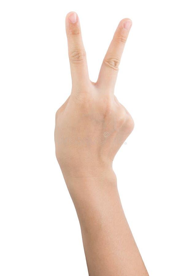 Olika gester och tecken av kvinnas hand som isoleras p? vit bakgrund med urklippbanan royaltyfri bild