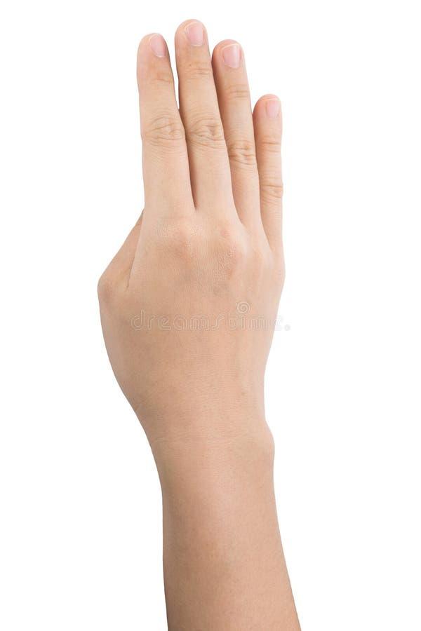 Olika gester och tecken av kvinnas hand som isoleras p? vit bakgrund med urklippbanan royaltyfri fotografi
