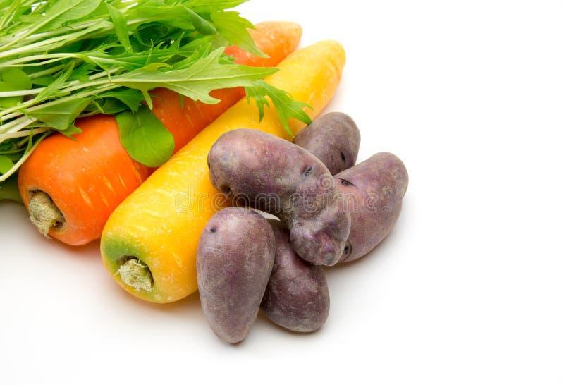 Olika grönsaker i en vit bakgrund royaltyfria bilder
