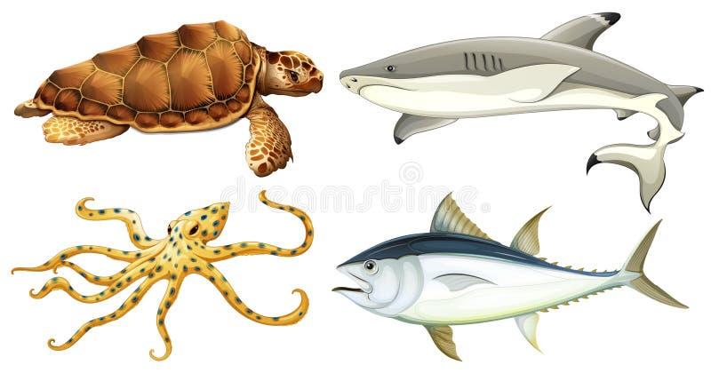 Olika havsvarelser royaltyfri illustrationer