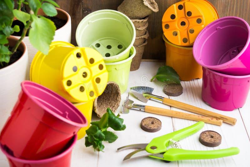 Olika hem- trädgårds- hjälpmedel och färgrika krukor på en trätabell fotografering för bildbyråer