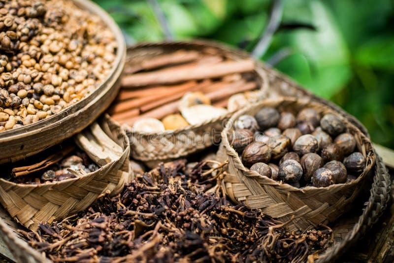 olika kryddor i indonesia royaltyfri bild