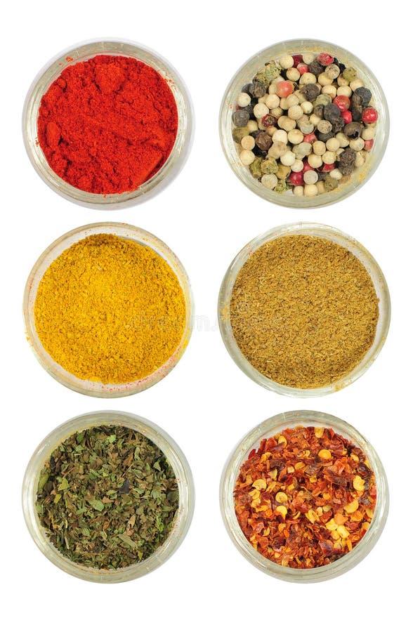 Olika kryddor i runda glass bunkar royaltyfri fotografi