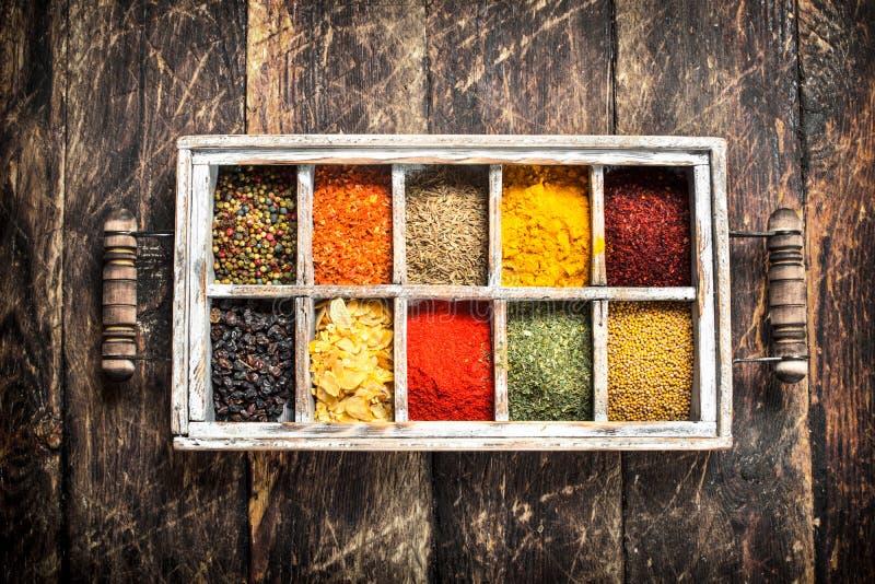 Olika kryddor och örter i en ask royaltyfri bild