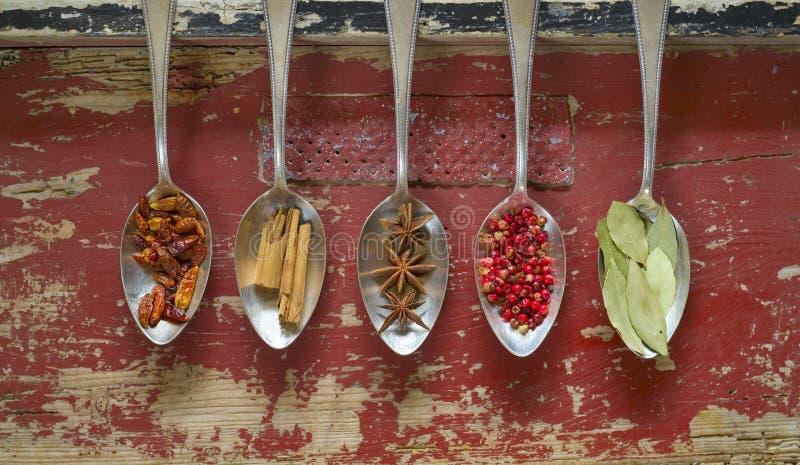 Olika kryddor på silverskedar royaltyfria foton