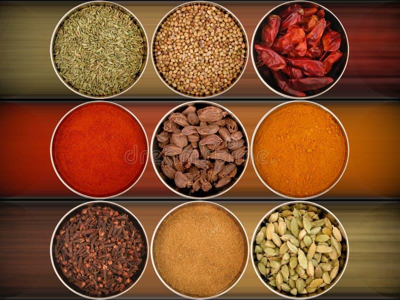 olika nio kryddor fotografering för bildbyråer
