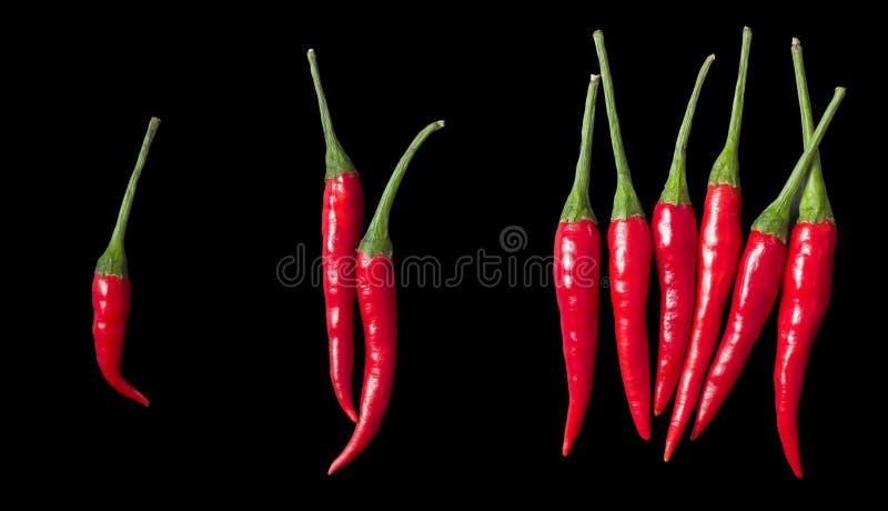 Olika nivåer av spiciness royaltyfria foton