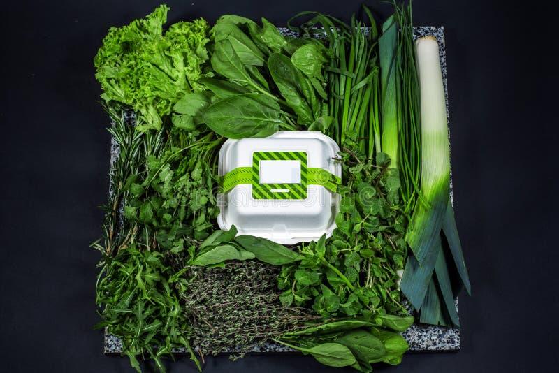 Olika nya gräsplaner med grönsallat, mintkaramellen, persilja, löken och asken royaltyfri fotografi