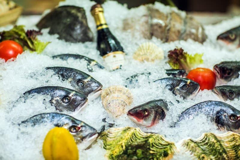 Olika sorter av fisken på is med nya grönsaker arkivbilder