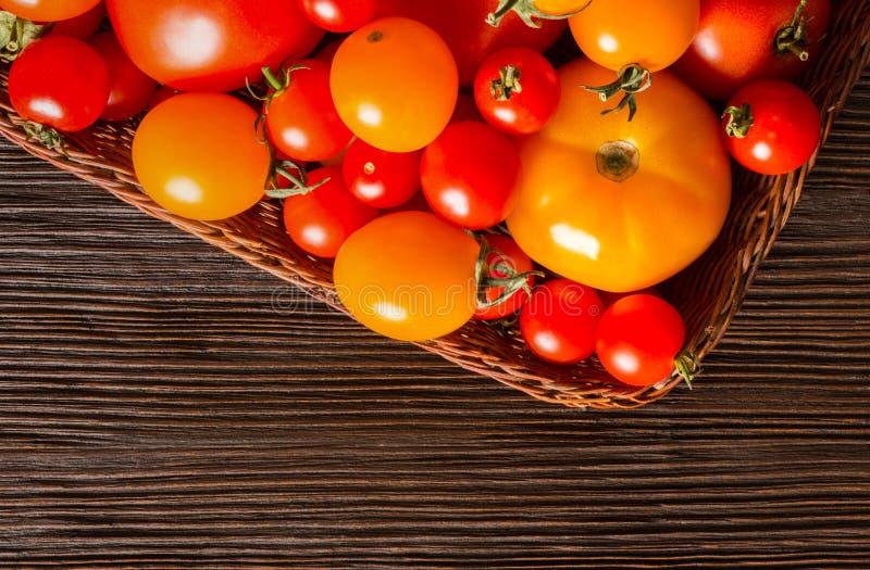 Olika sorter av nya tomater arkivfoto