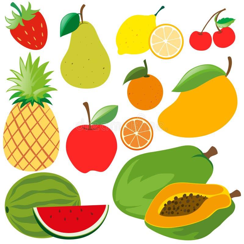 Olika sorter av organiska frukter royaltyfri illustrationer