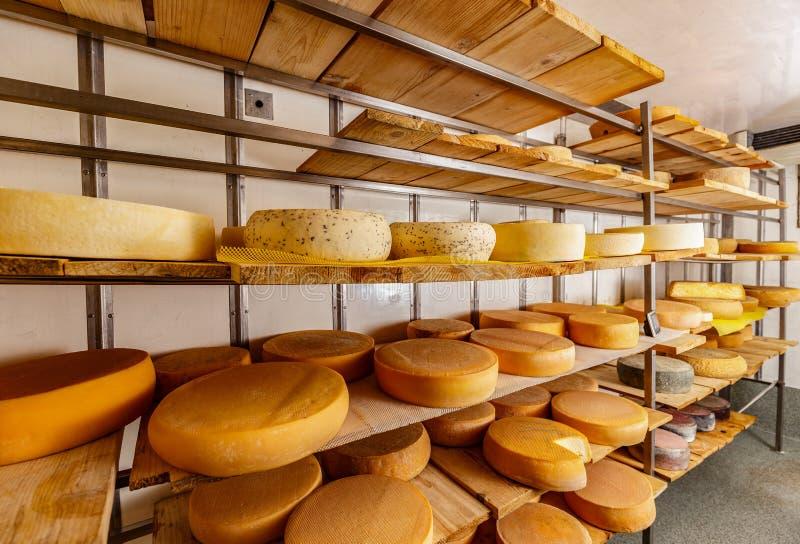 olika sorter för ost arkivfoton
