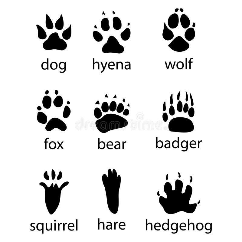 Olika spår av vilda djurdesignsymbolen stock illustrationer