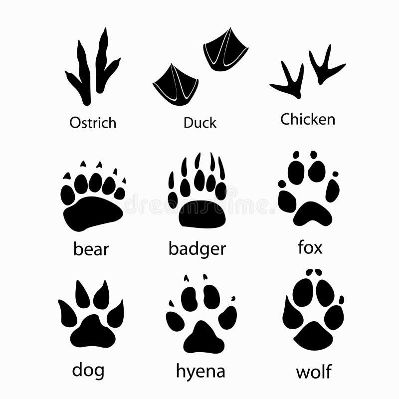 Olika spår av vilda djurhönsdesignen vektor illustrationer