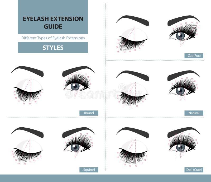 Olika typer av ögonfransförlängningar Stilar för smickra blick Infographic vektorillustration stock illustrationer