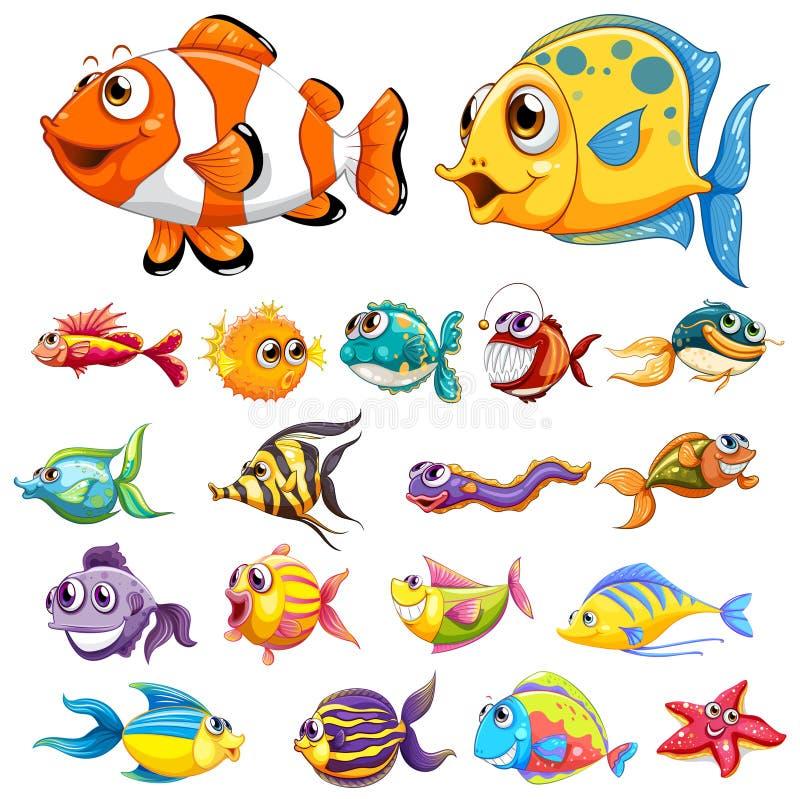 Olika typer av fisken royaltyfri illustrationer
