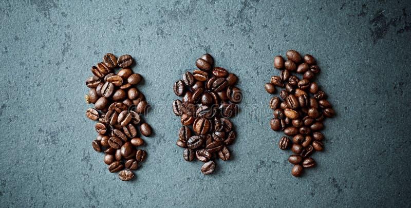 Olika typer av kaffebönor fotografering för bildbyråer