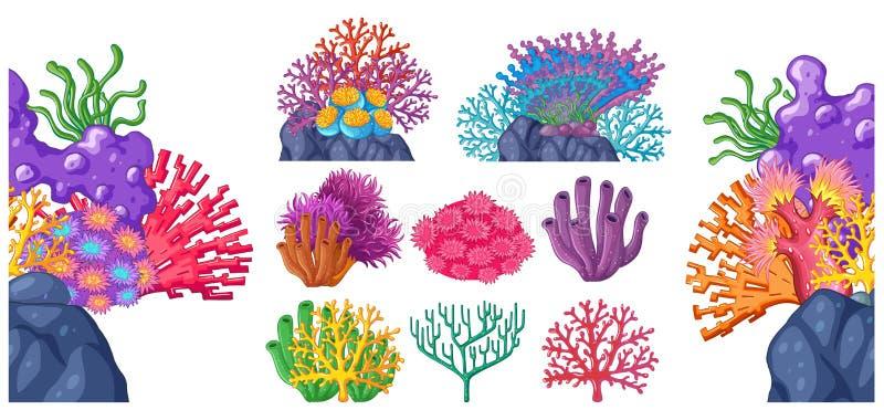 Olika typer av korallreven vektor illustrationer