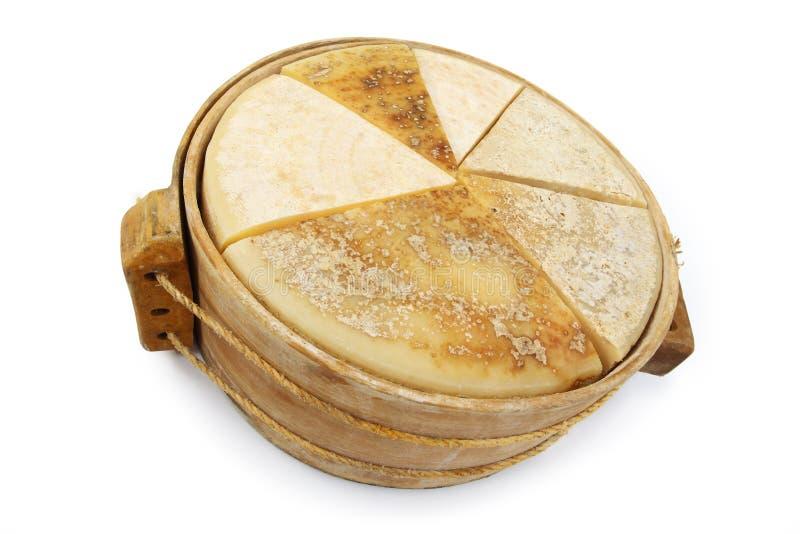 Olika typer av ost i form fotografering för bildbyråer